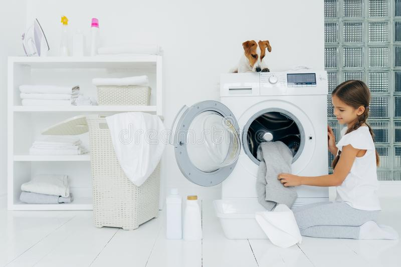 Busy little pretty girl does laundry at home, poses on knees near washing machine, uses liquid powder, pedigree dog on top of. Washer, looks at small female stock photo