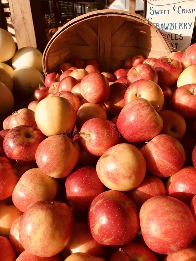 Buszel świezi czerwoni jabłka przy rynkiem, badanie lekarskie handlu detalicznego rynek zamierzający sprzedawać foods konsumenci  obraz royalty free