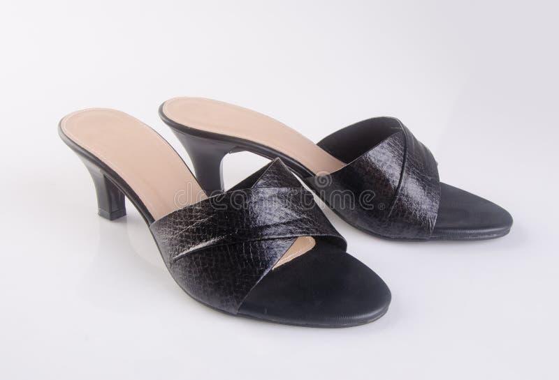 buta lub czerń koloru damy buty na tle obrazy stock