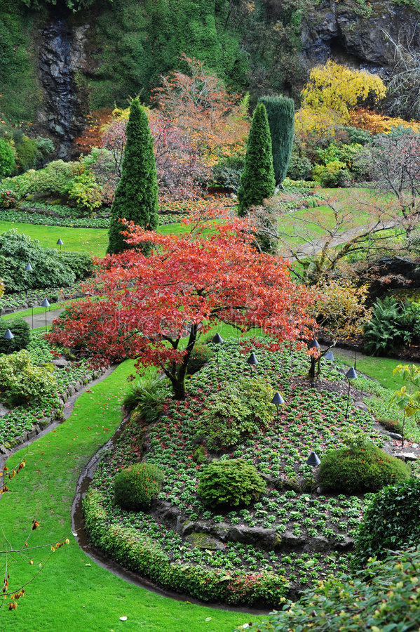 butchart庭院从事园艺凹下去 图库摄影