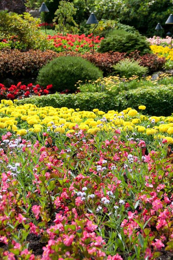 Butchart Gärten - Ansicht des versunkenen Gartens stockfotos