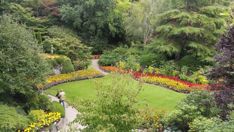 Butchart Gardens royalty free stock photos