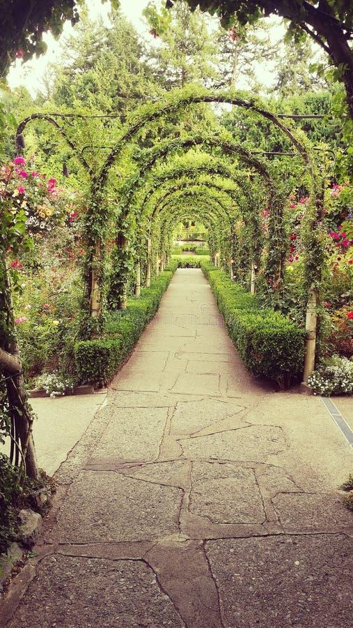 Butchart Gardens stock images