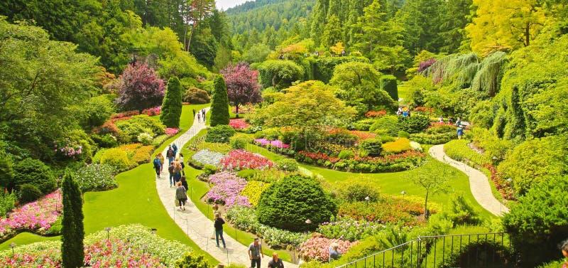 Butchart uprawia ogródek Wiktoria kolumbiów brytyjska Kanada obraz royalty free
