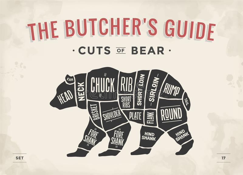 Butcher Diagram Scheme Bear Stock Vector Illustration Of