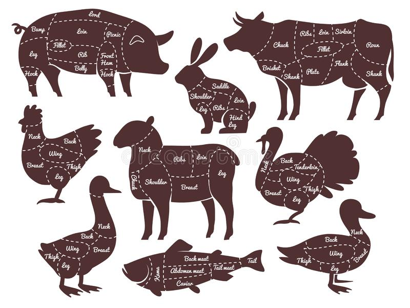 Butcher diagrams. Cutting lines different parts domestic farm animals silhouettes. Outline meat schemes, market menu. Vector lamb chicken sheep isolated food vector illustration