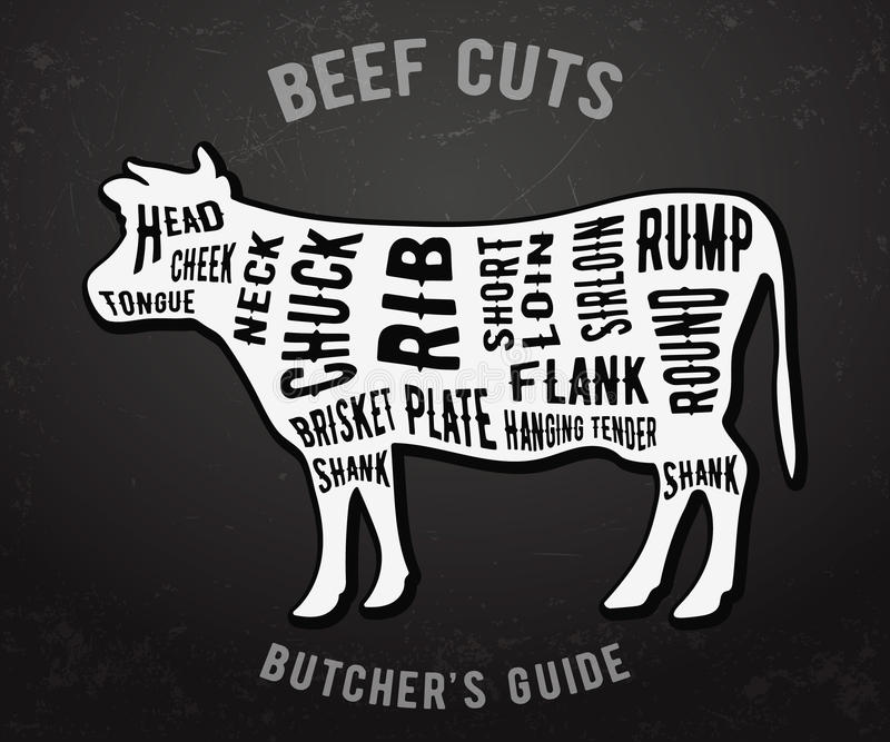 Butcher guide beef cuts royalty free illustration