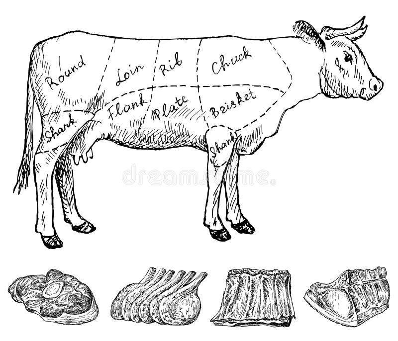 Butchery. Hand drawing set of vector sketches vector illustration