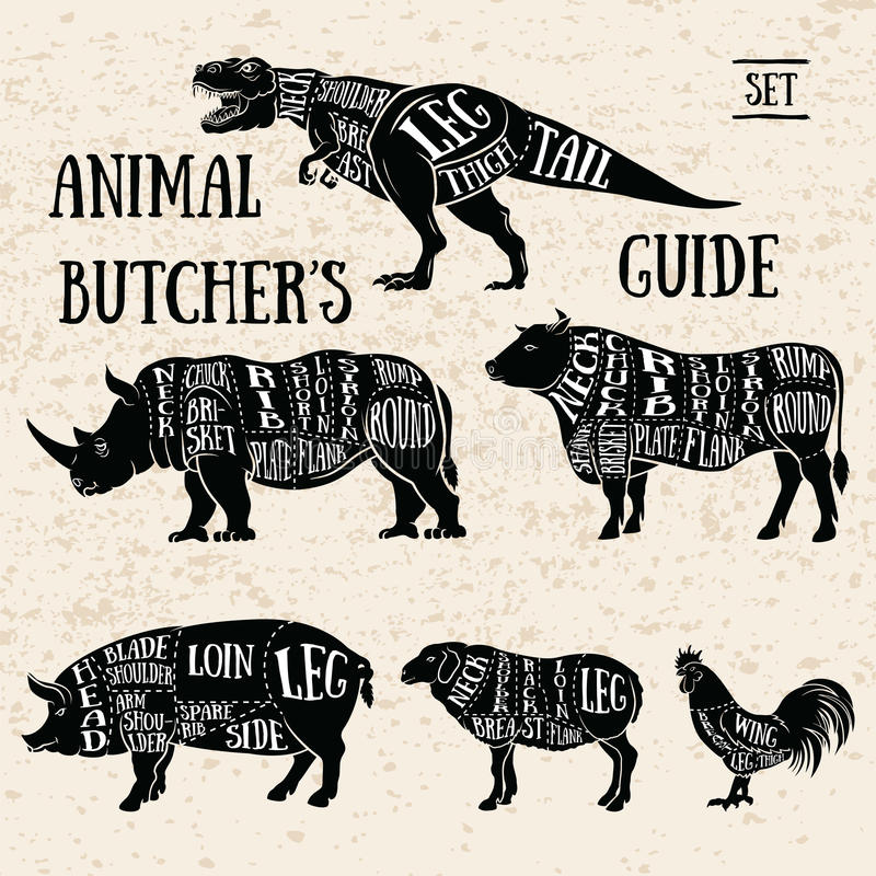Butchery shop animal set. Vintage Typography Guide for Cutting Meat. Butchery shop animal set stock illustration