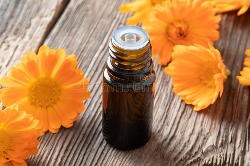 Butelka calendula istotny olej z calendula kwitnie zdjęcie royalty free