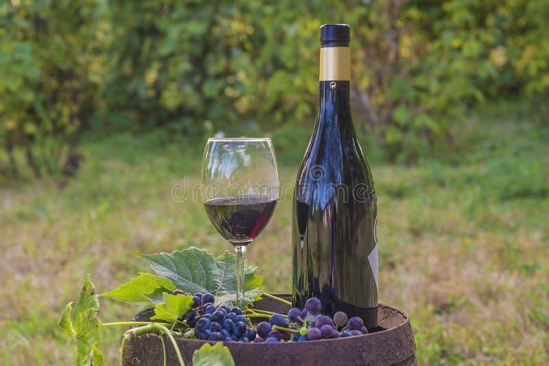 Butelka i szkło czerwone wino, winogrona na starej baryłce zdjęcia stock