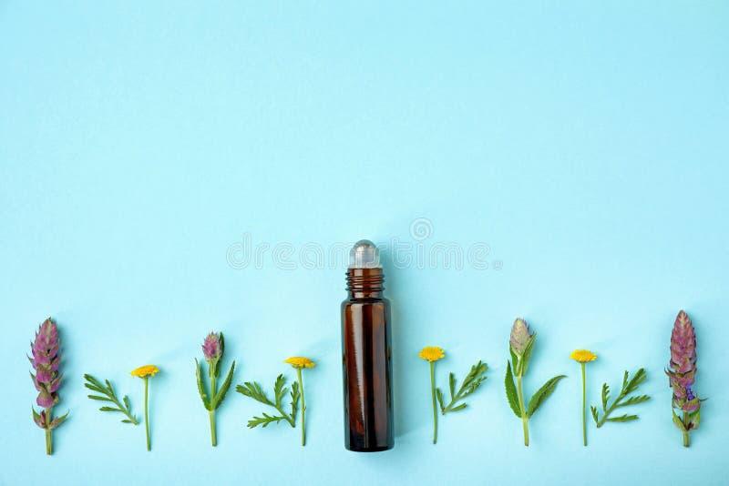 Butelka istotny olej i wildflowers na koloru tle, mieszkanie nieatutowy Przestrze? dla obraz stock