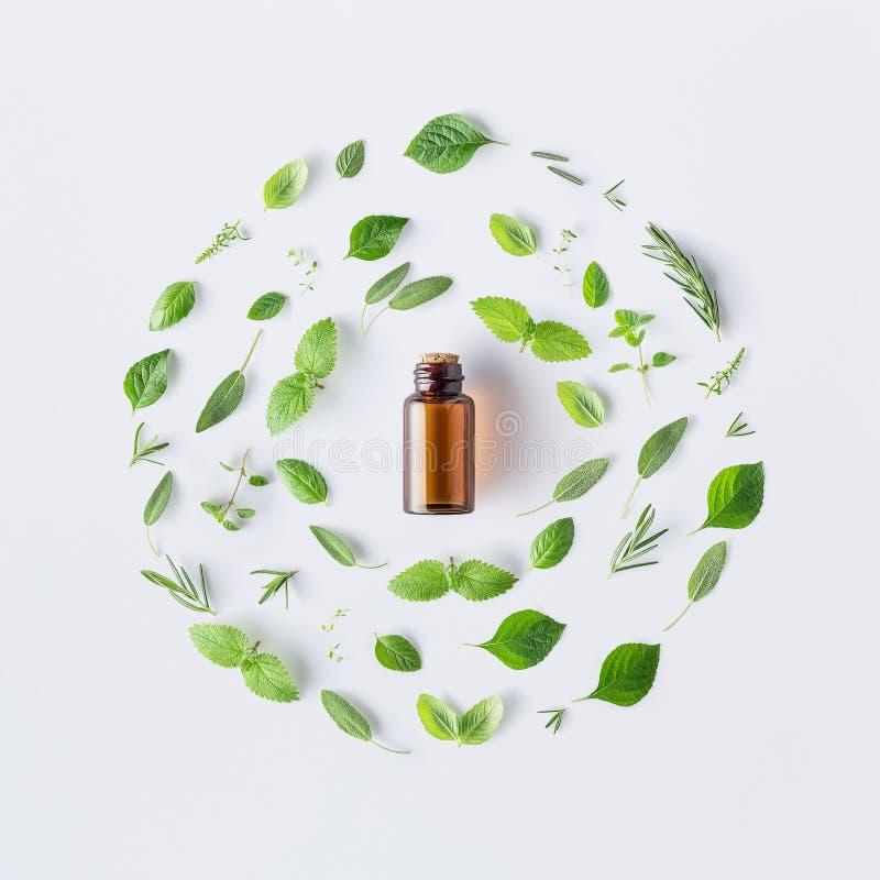 Butelka istotny olej z round kształtem świezi ziele i spic fotografia royalty free