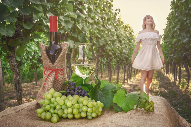 Butelka wino, winogradów winogrona i szkło na tle Dan, fotografia royalty free