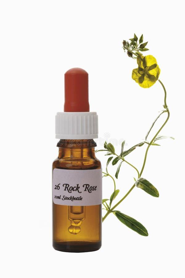 Butelka z Bach kwiatu zapasu remedium, skała wzrastał (Cistaceae) zdjęcie royalty free