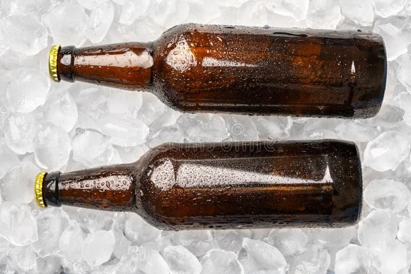 Butelki świeży piwo na lodzie zdjęcia royalty free