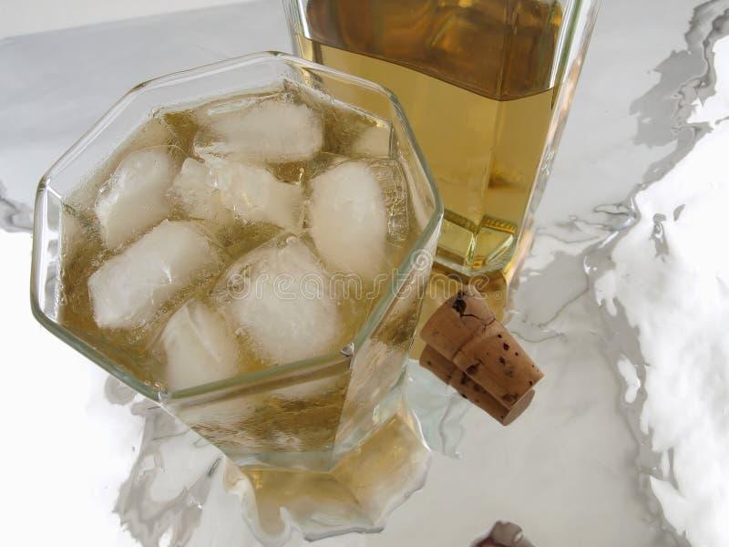 butelki alkoholu cork szkła obrazy stock