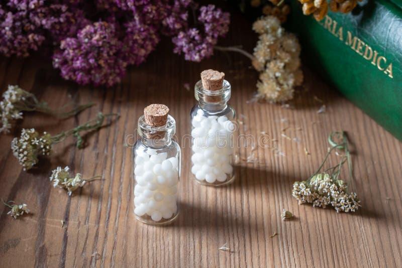 Butelki homeopatyczne pigułki z wysuszonymi ziele i materia medica zdjęcie stock