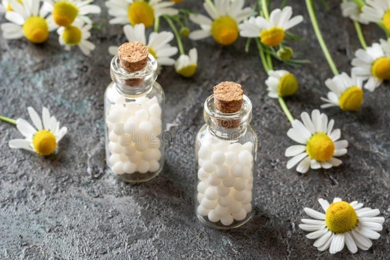 Butelki homeopatyczne pigułki z chamomile kwiatami zdjęcie stock