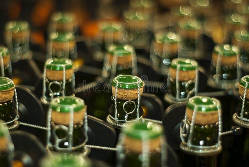Butelki iskrzasty wino, piwo lub cydr, fotografia stock