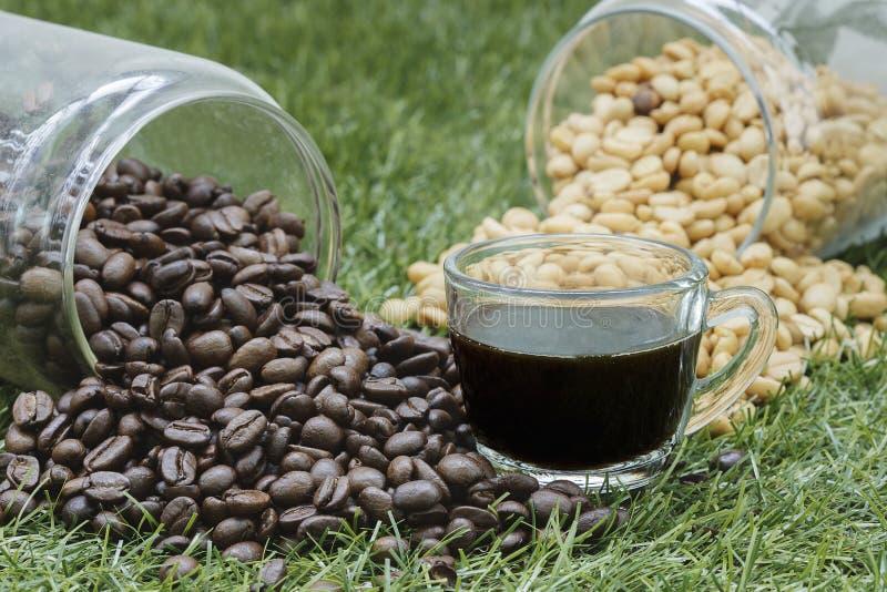 Butelki kawowa fasola z filiżanką kawy zdjęcie stock