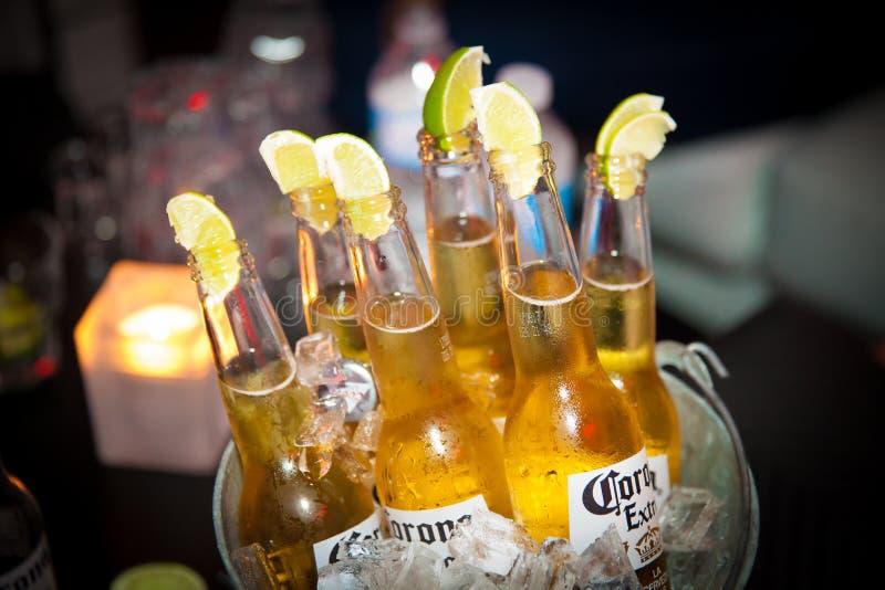 Butelki korony słonecznej piwo w wiadrze obraz stock
