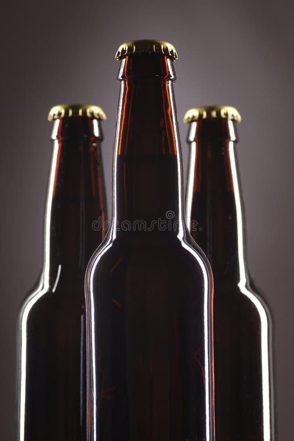 butelki po piwie fotografia royalty free