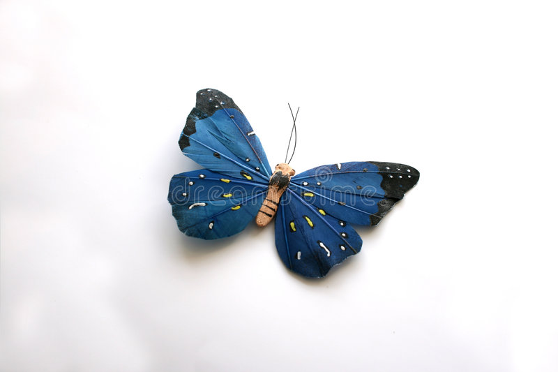 Buterfly blu immagini stock