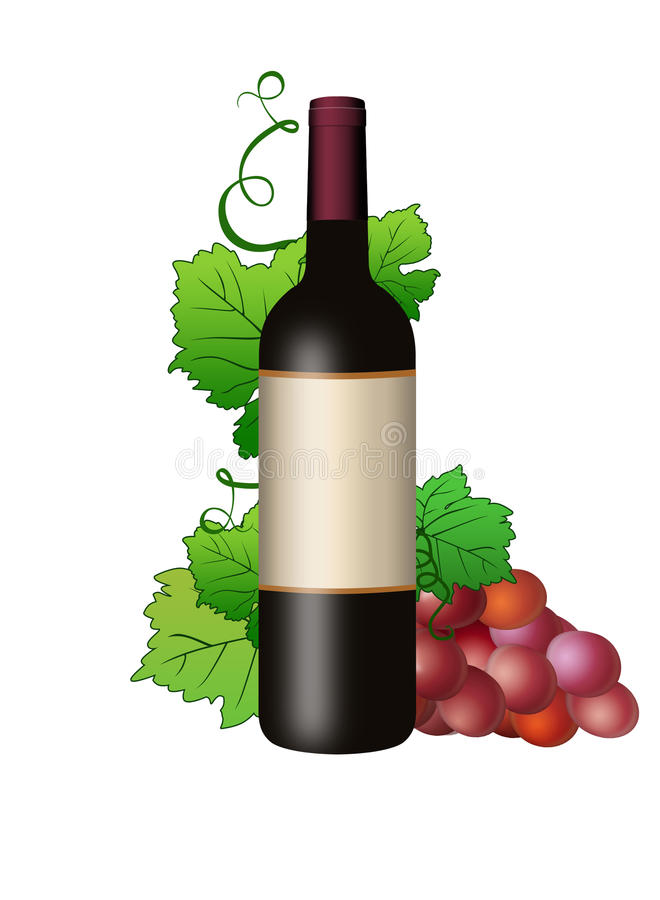 Butilka met wijn en wijnstok stock illustratie