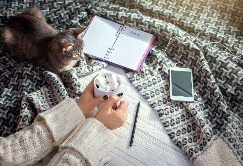 Buts d'écriture avec le chat et le café de matin photo stock