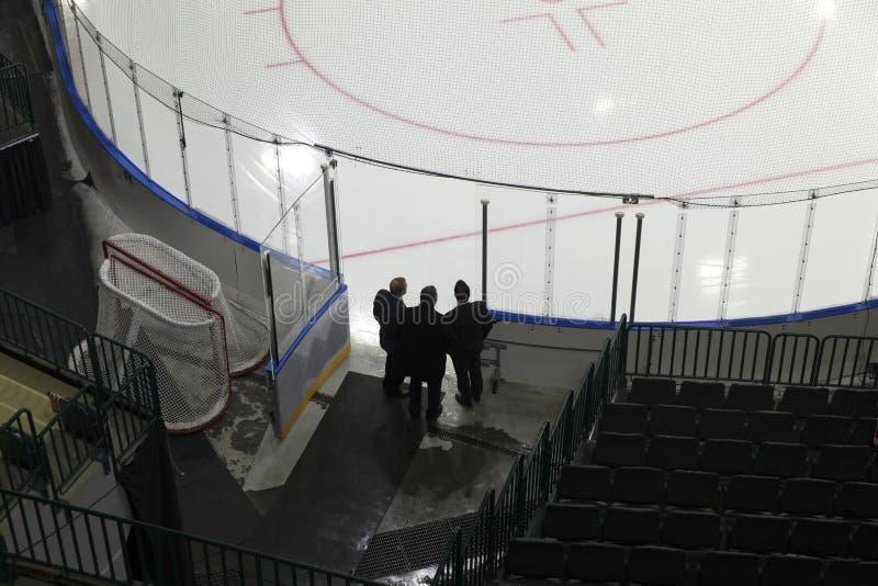 Buts d'hockey photographie stock libre de droits