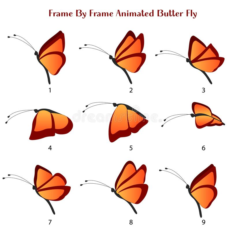 Free Butter Fly Vector Illustration, Frame By Frame Animated Butterfly Editable Source File Stock Photography - 184549192