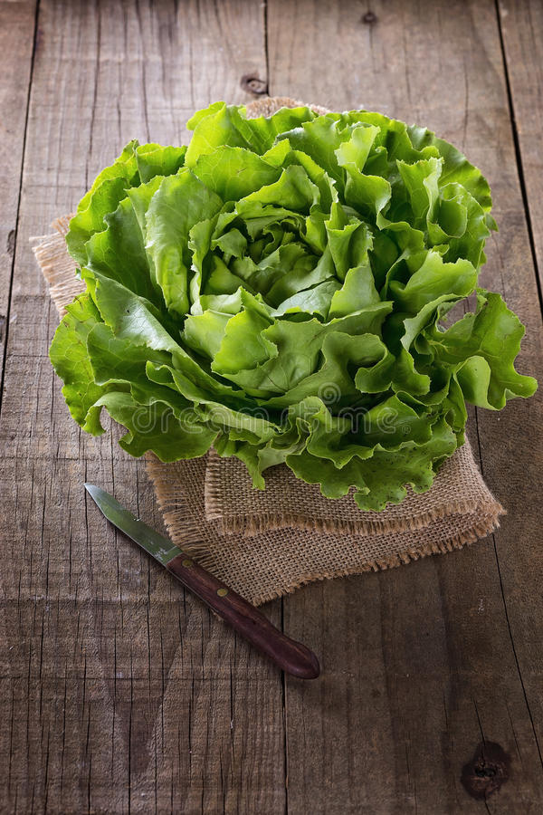 Butter lettuce on a burlap cloth over rustic background stock images