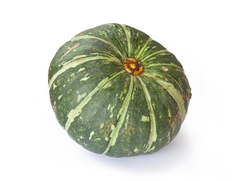 Buttercup Squash royalty free stock photo
