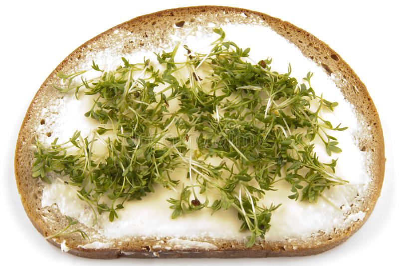 Buttered Bread With Cress