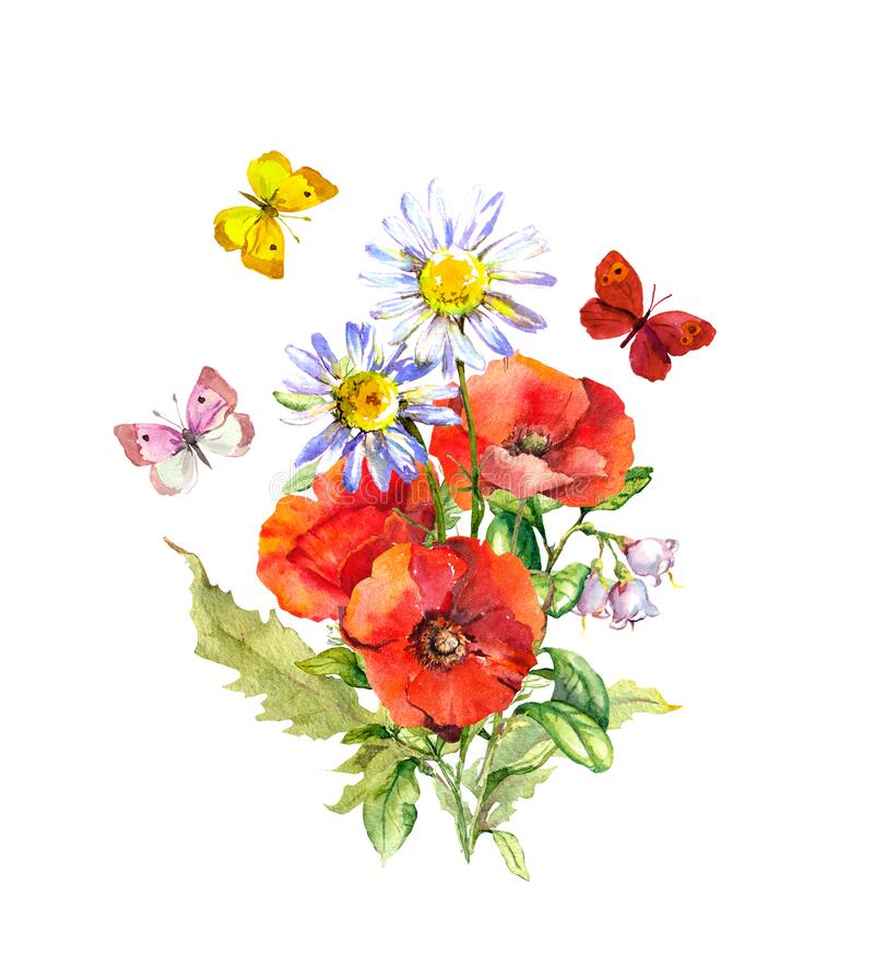 Free Butterflies At Bouquet With Flowers. Floral Summer Composition - Poppies, Chamomile Flower. Watercolor Royalty Free Stock Photos - 191792308