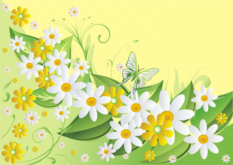 Download Butterflies and camomiles stock vector. Image of floral - 8971632