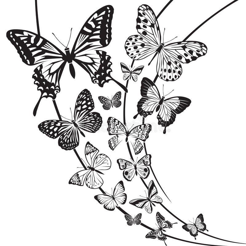 Butterflies design royalty free illustration