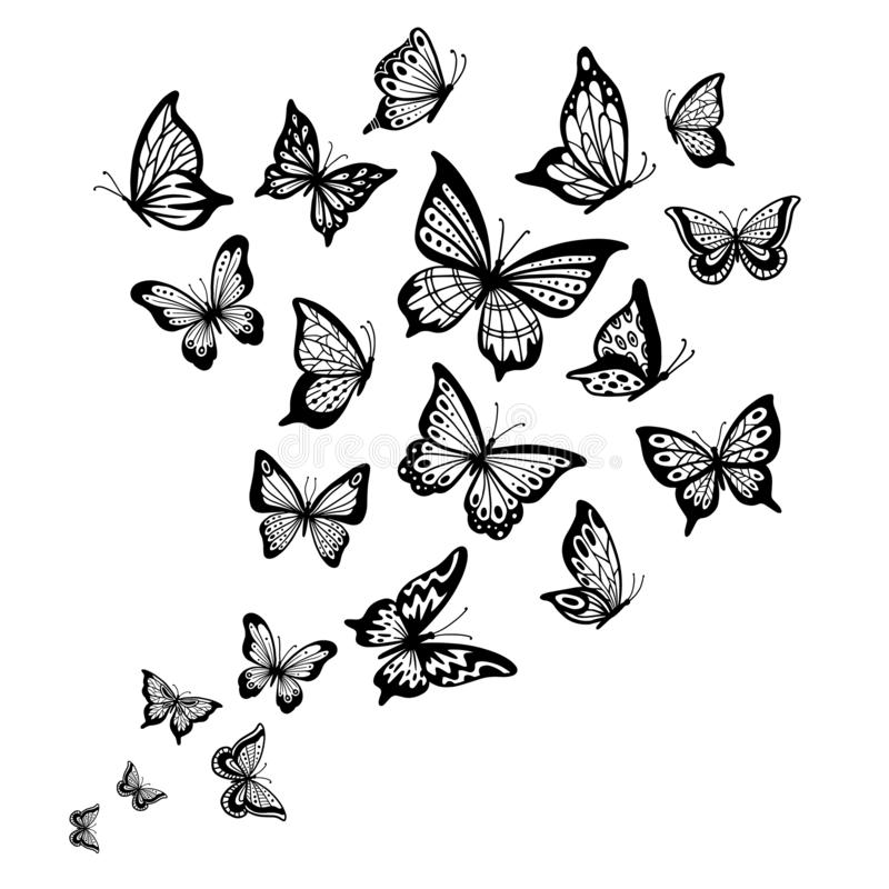Butterflies flow. Butterfly wing, spring flying insect and flight wave vector background illustration. Butterflies flow. Butterfly wing, spring flying insect and royalty free illustration
