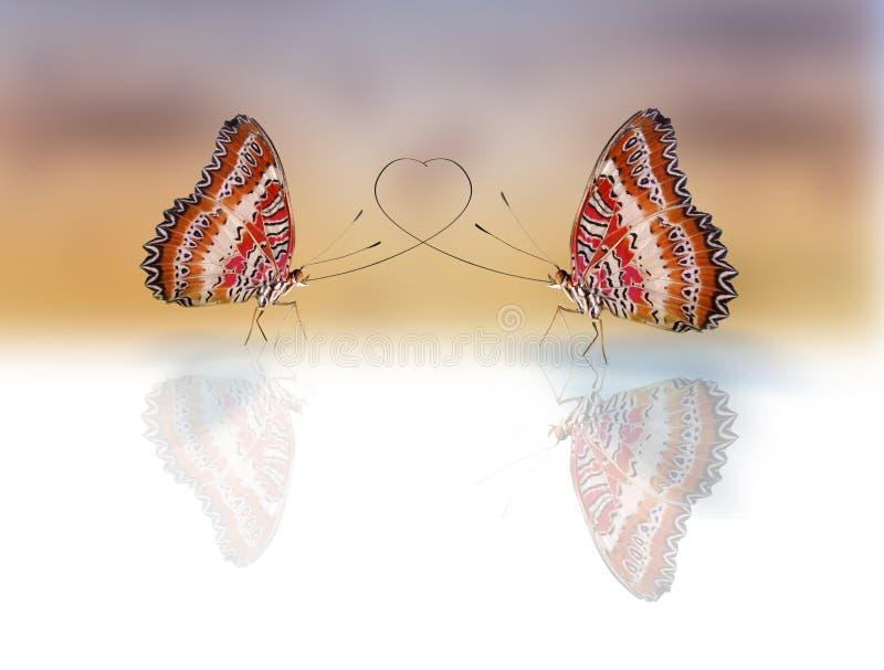 Butterflies in love royalty free illustration