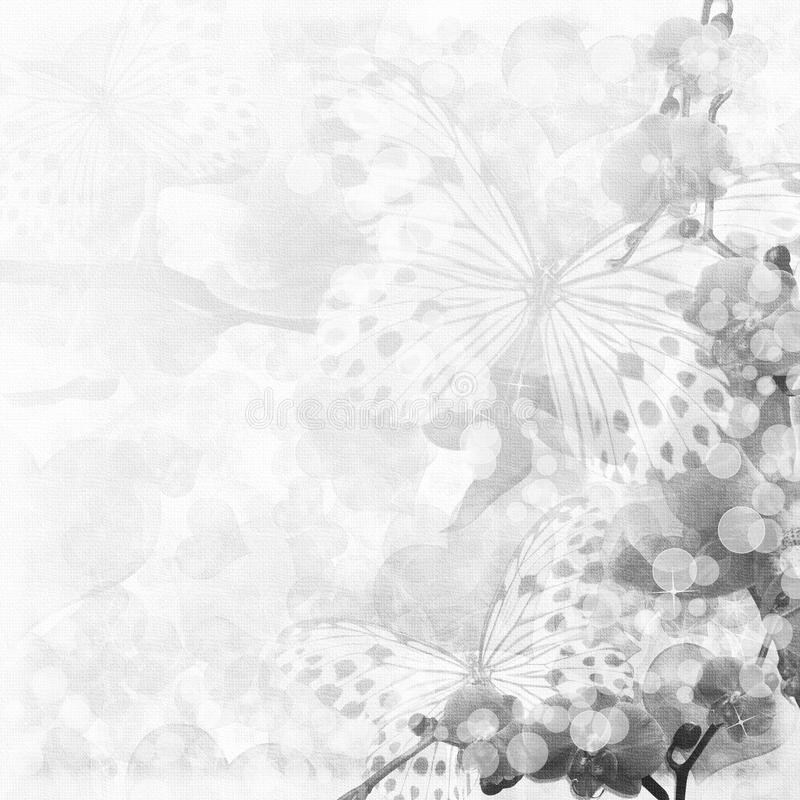 Butterflies and orchids flowers background royalty free illustration