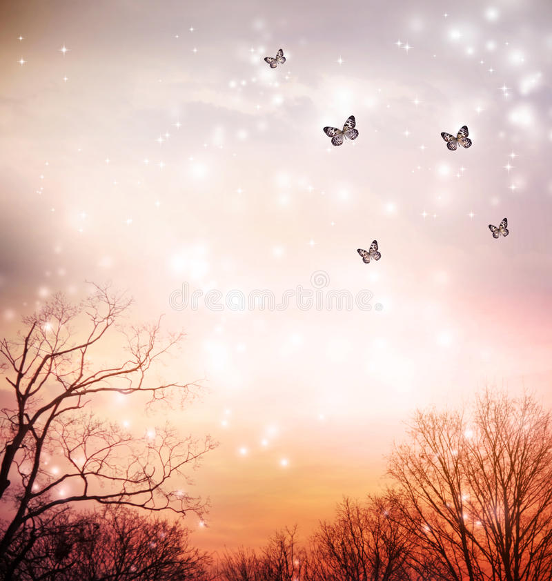 Butterflies on red trees background stock photo