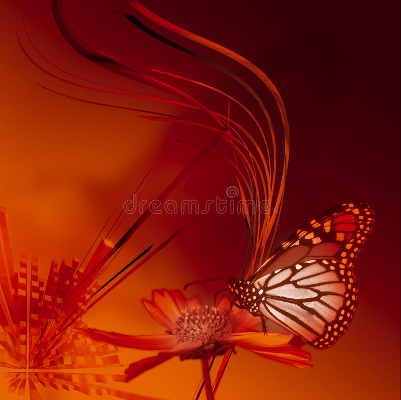 Butterfly. Abstract illustration whith butterfly in orange color stock illustration