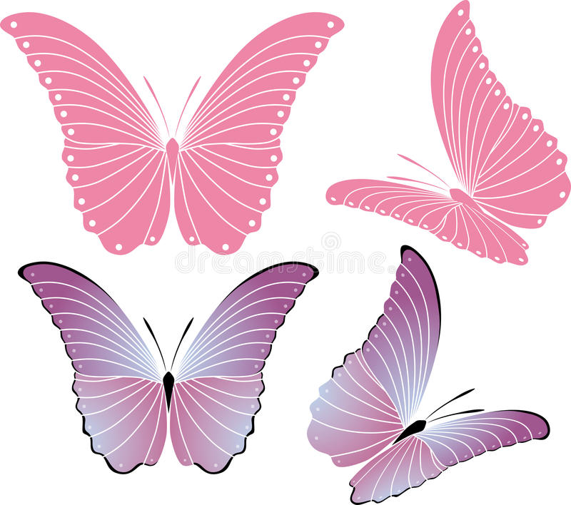 Download Butterfly stock photo. Image of insect, beauty, sign - 13165470