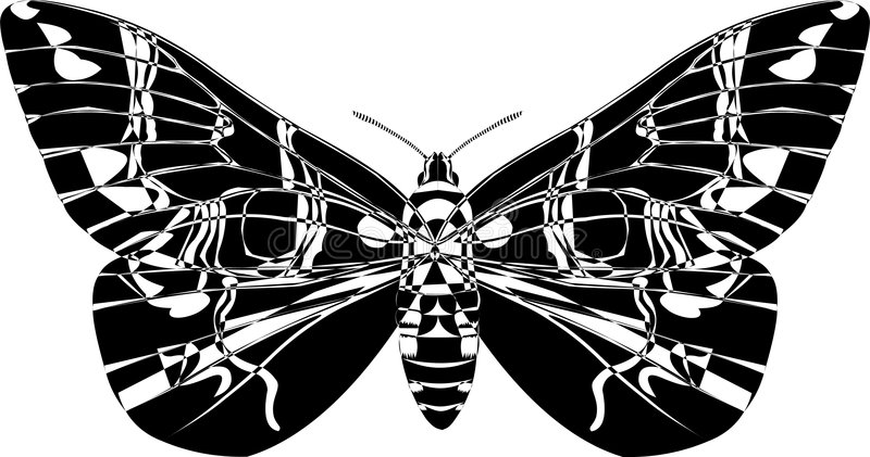 Download Butterfly stock vector. Image of metamorphisis, beauty - 1464465