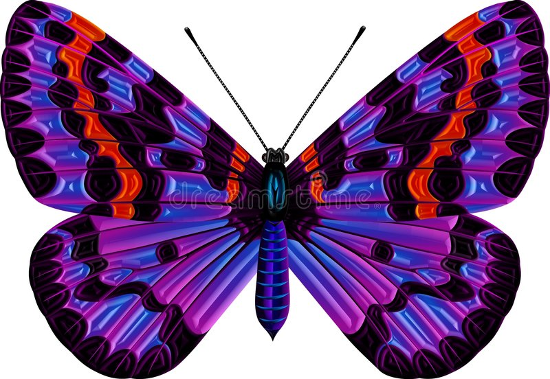 Download Butterfly stock illustration. Image of vivid, dots, antenna - 1615538