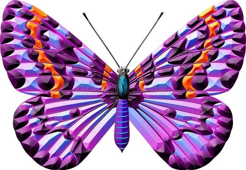 Download Butterfly stock illustration. Image of nature, element - 1615577