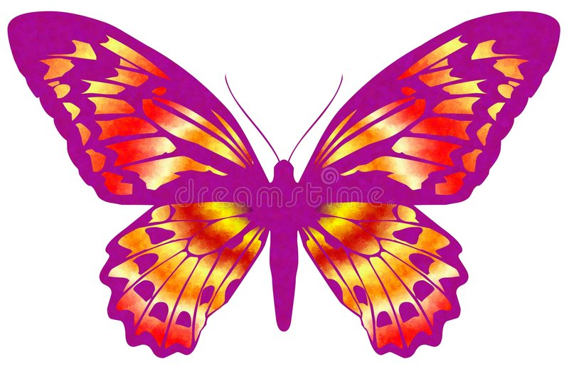 Download Butterfly 19 stock illustration. Image of design, color - 4617618