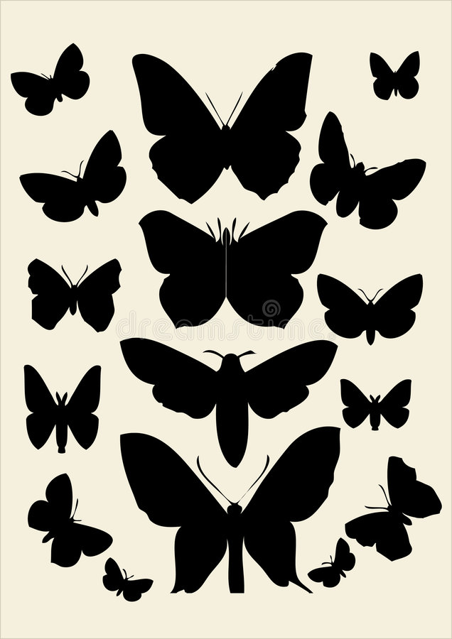 Free Butterfly Royalty Free Stock Photo - 3011225