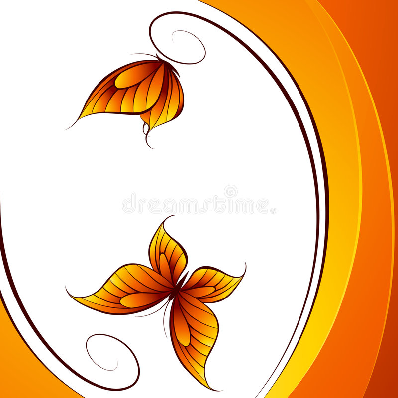 Butterfly. Abstract beautiful vector illustration